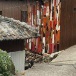 真鍋島の猫(岡山のねこ島)