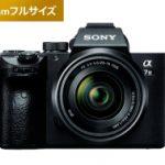 α7Ⅲと24-105mm F4で撮る猫写真