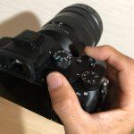 フルサイズミラーレスα7Ⅲの猫写真に最適なカメラセッティング